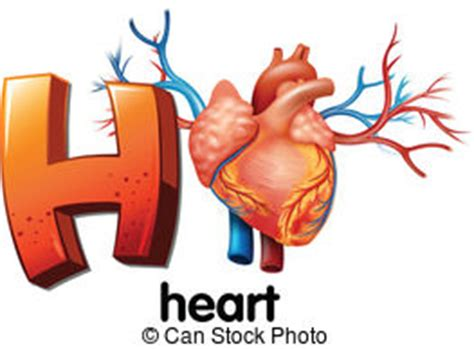 Essay on coronary heart disease